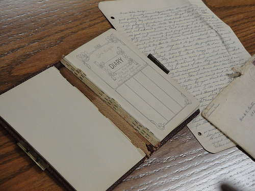 Aline Carter's 1913 diary and some correspondence.