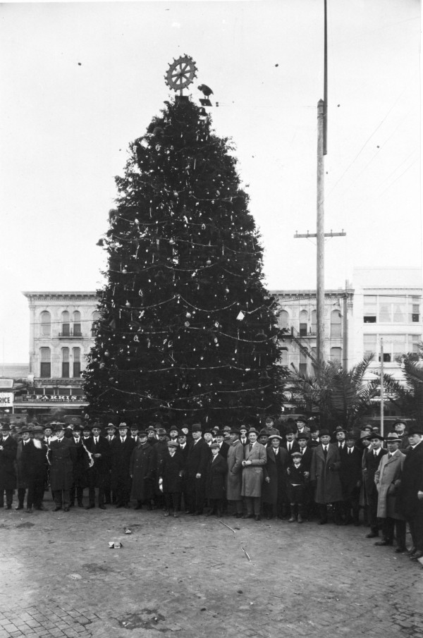 Rotary Club Christmas tree on Alamo Plaza, 1920s.  (MS 362: 082-0625)