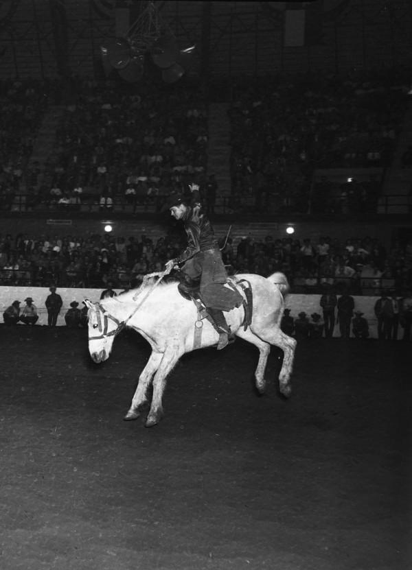 Saddle bronc riding contest at rodeo staged by prominent rodeo producer Everett Colborn.   (MS 359: L-3913-H)