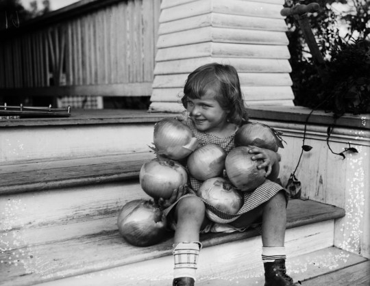 Geraldine White, at family residence, with Valencia onions shipped to San Antonio from her uncle's farm in Arizona, November 1924.  (MS 359: L-0061-D)