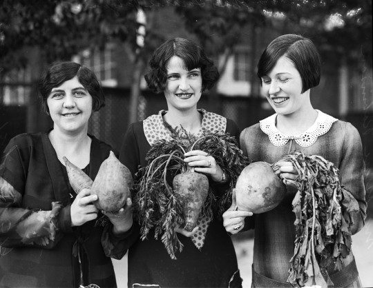 Ruth Bryant, with sweet potatoes, Loraine Polzin, with a carrot, and Grace Robinson, with a turnip, all grown in the nearby Winter Garden District of Southwest Texas, January 1926.   (MS 359: L-0519-F)