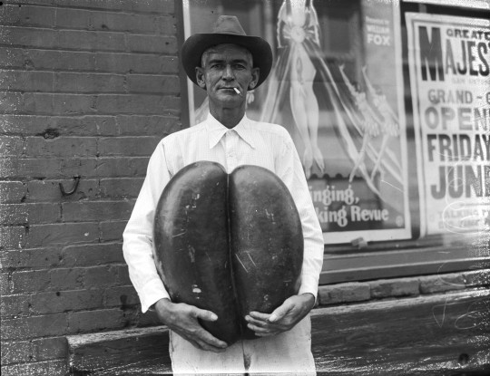 G. C. Reed, sign writer, holds conjoined watermelons grown on a farm near Pleasanton, June 1929.  (MS 359: L-1152-K)