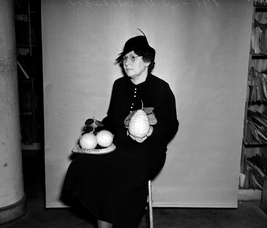 Hulda Wilson poses in the San Antonio Light Building with lemons from her yard on Sandmeyer Street, February 1937.  (MS 359: L-1536-ZZ)