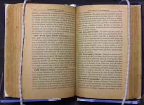 La Cocinera Poblana (1901) [TX725 .C635 1901]