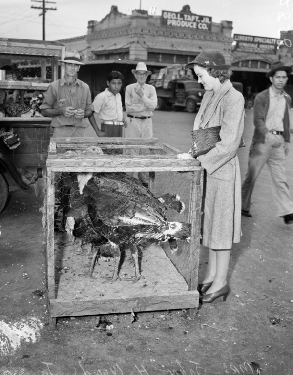 Mrs. John H. Wood, Jr. (née Katie Holmes) shopping for a Thanksgiving turkey at Haymarket Plaza, 1941, MS 359