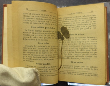 Four-leaf clover laid in. Manual de Cocina : Recetas (1905) by María Isla.