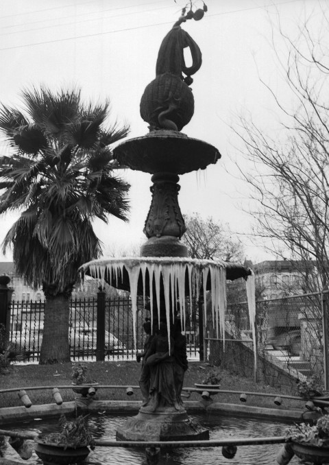 Icicles on fountain in City Water Board Park on Market Street, January 29, 1949.  (San Antonio Light Collection, MS 359: L-3694-M)