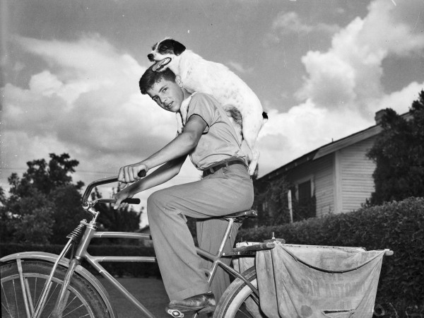 Billy Woodward takes his dog along while he delivers newspapers from his bicycle, San Antonio, May 1941.  (San Antonio Light Photograph Collection MS 359: L-2760-B)