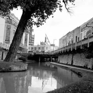 Scene along the San Antonio river, November 25, 1960, MS 359