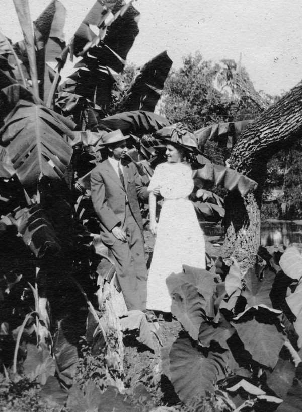 Charles H. Brewster and Olive Nesbitt pose among the banana trees and elephant ears in Landa Park, New Braunfels, circa 1910. (MS458: 115-0371)