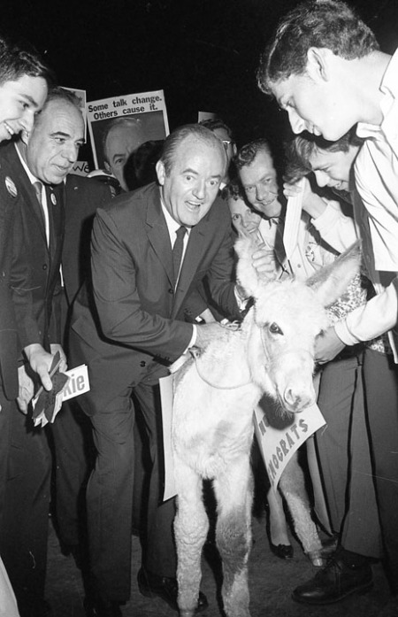 "Senator Hubert H. Humphrey, Democratic presidential nominee, encounters a donkey among the crowd welcoming him at International Airport, October 22, 1968. U. S. Rep. Henry B. Gonzalez is next to him as they walk toward the ""Humphrey Howdy Hop"" outside the airport, a prelude to two speeches in the city the next day. (San Antonio Light Collection, MS 359: L-6386-C-37)"