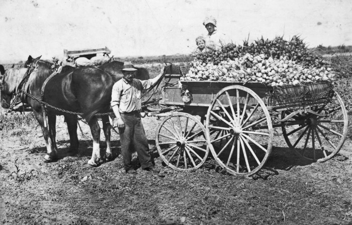 Peet and Mary Persyn with vegetables from their farm southwest of San Antonio. (074-1083. Courtesy of Mrs. Cyril Persyn)
