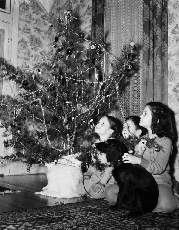 Three children and a dog looking at a Christmas tree. Undated.